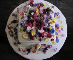 Articulo flores comestiblesEat flowers 3