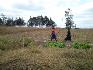 Mujeres por el campo