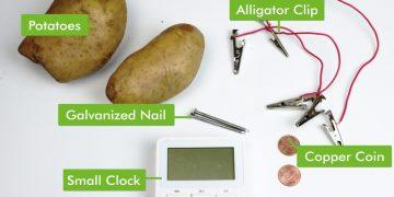La antena de patata y las agujas de punto