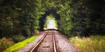 El viaje de la vida