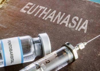 Eutanasia y suicidio asistido